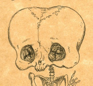 bettyboop2 324x300 Anatomía de los dibujos animados