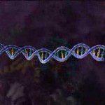 Video thumbnail for youtube video Subtitulando Videos Biológico-Sanitarios