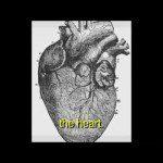 Video thumbnail for youtube video Hard 'N Phirm: Oda al corazón