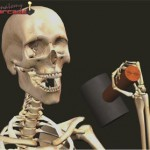 Anatomia Arcade 2