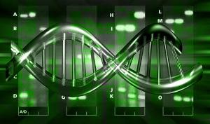 adn La carrera por el genoma de 1.000 $