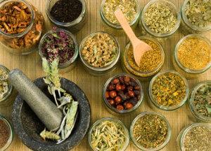 Plantas medicinales 6 mitos sobre las plantas medicinales