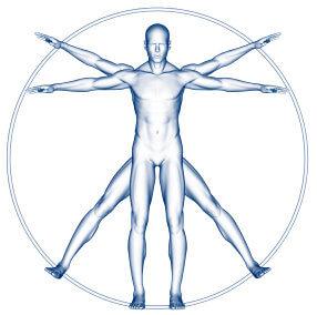 HombreVitrubio Los límites extremos del cuerpo humano