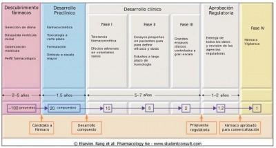 Fases desarrollo de fármacos