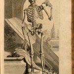 ilustraciones medicina