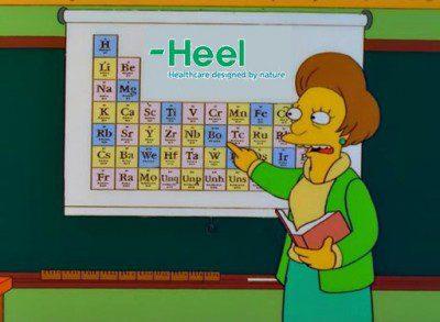 Heel Homeopatía