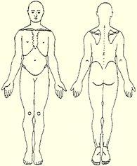 posturas1 Las posturas en medicina I