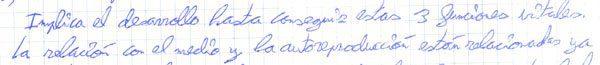 degeneración caligráfica