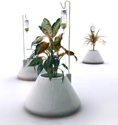 goteros plantas