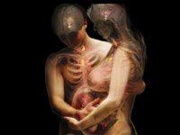 humanos translúcidos