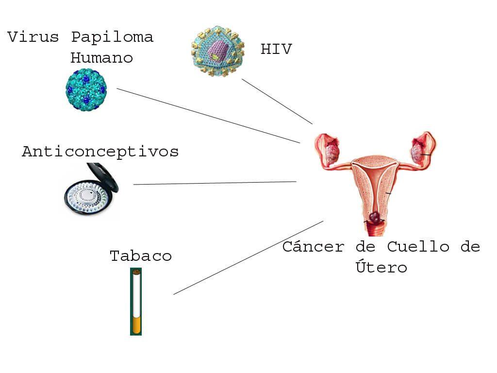 cáncer útero