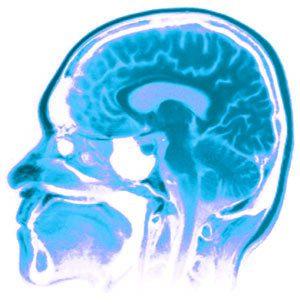 mitocerebro ¿Sólo usamos el 10% de nuestro cerebro? Rompiendo el mito