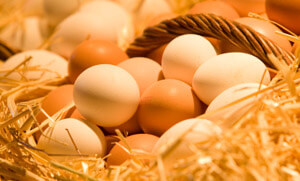 Huevos El mito de las quemaduras y las claras de huevo